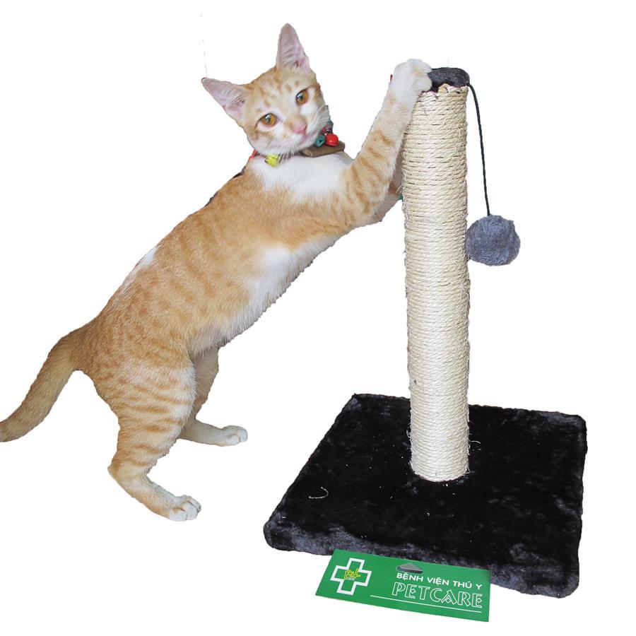 Trụ cào móng cho mèo
